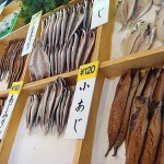 Onsen Theme Park & Himono (Salted dried fish)