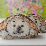 Creative Sushi Roll – Seal
