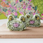 CREATIVE SUSHI ROLL – Frog