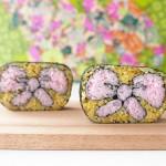 Creative Sushi Roll – Kazari Sushi – Ribbon