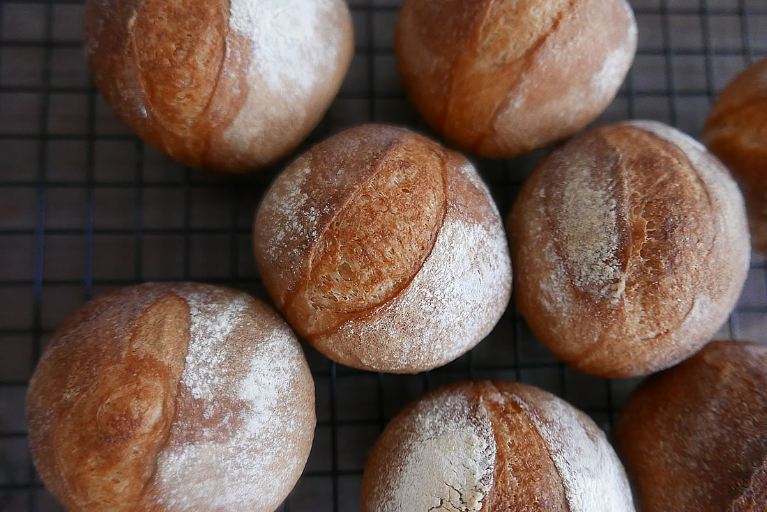 Crusty mini hard bread (petit pain)